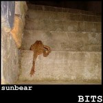 Sunbear - Bits