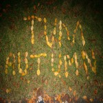 The Very Most - Autumn EP
